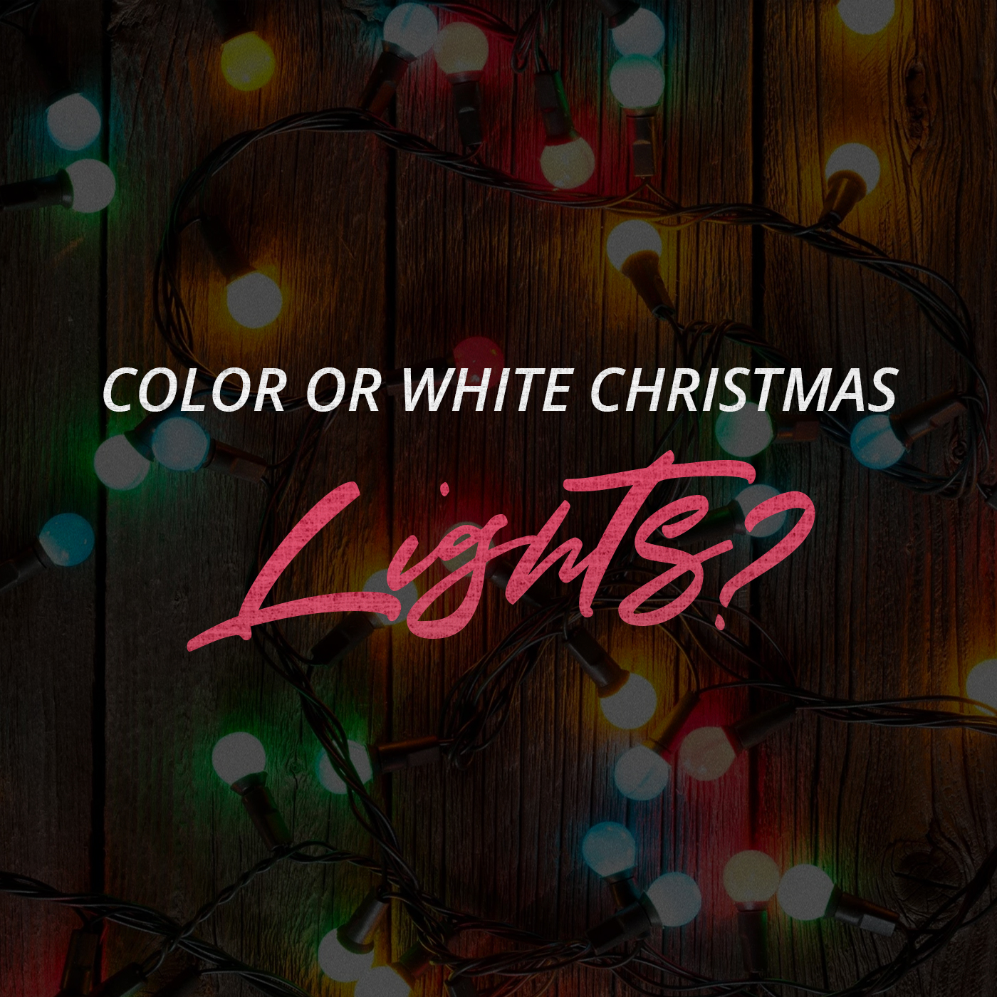 Color or White Christmas Lights?
